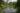 Ziegeleiweiher Eschlikon